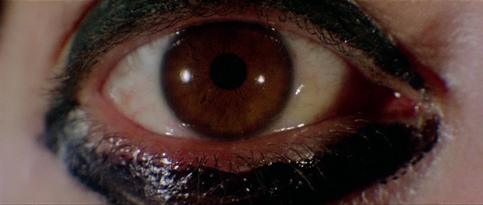 http://sinsofcinema.com/Images/Deep%20Red/Deep%20Red%20Blu-Ray%20(11).jpg