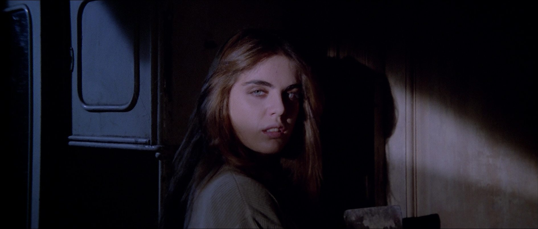 http://sinsofcinema.com/Images/House%20by%20the%20Cemetery/House%20by%20the%20Cemetery%20Blu-Ray.jpg