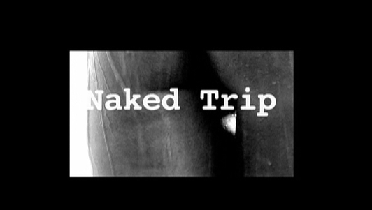 http://sinsofcinema.com/Images/Naked%20Trip/Naked%20Trip.jpg