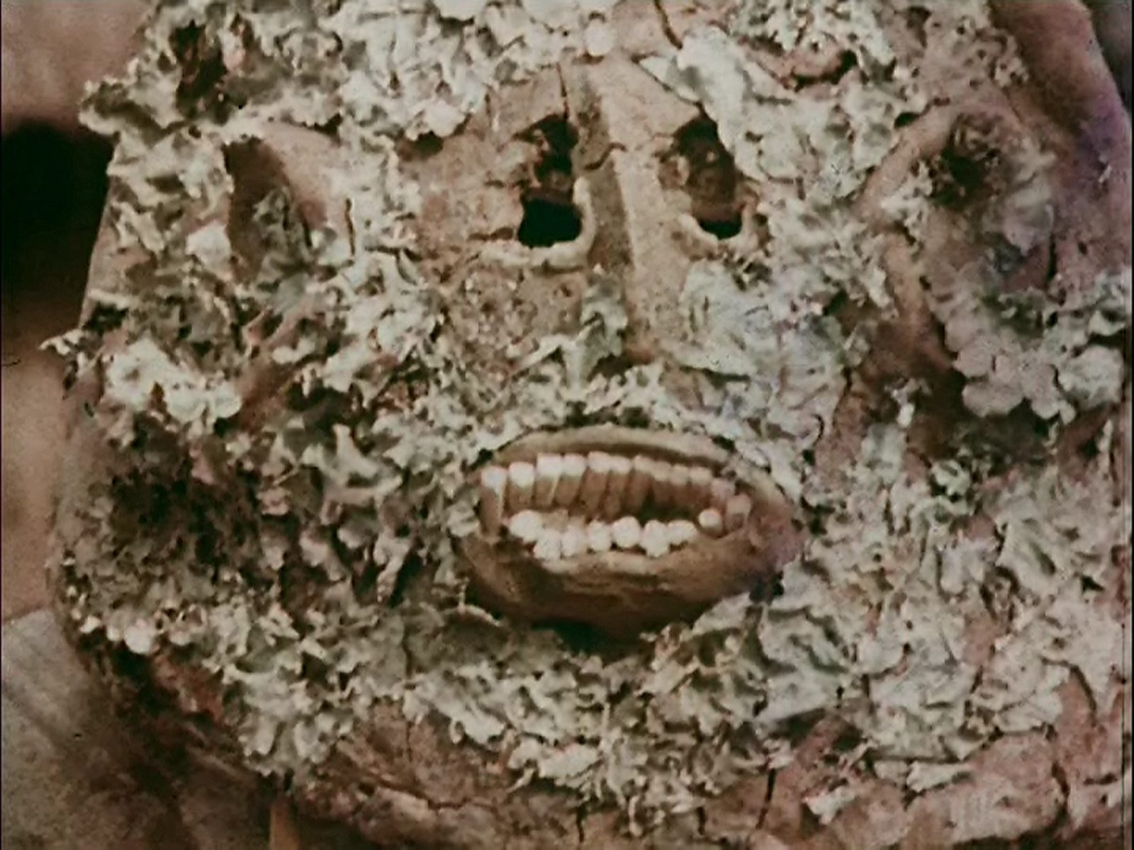 The Real Cannibal Holocaust (1976) - Forris Day Jr ...  |Real Cannibal Tribes