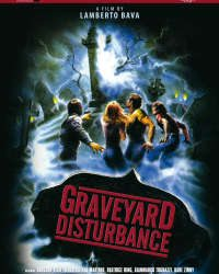 Graveyard Disturbance Movie Review
